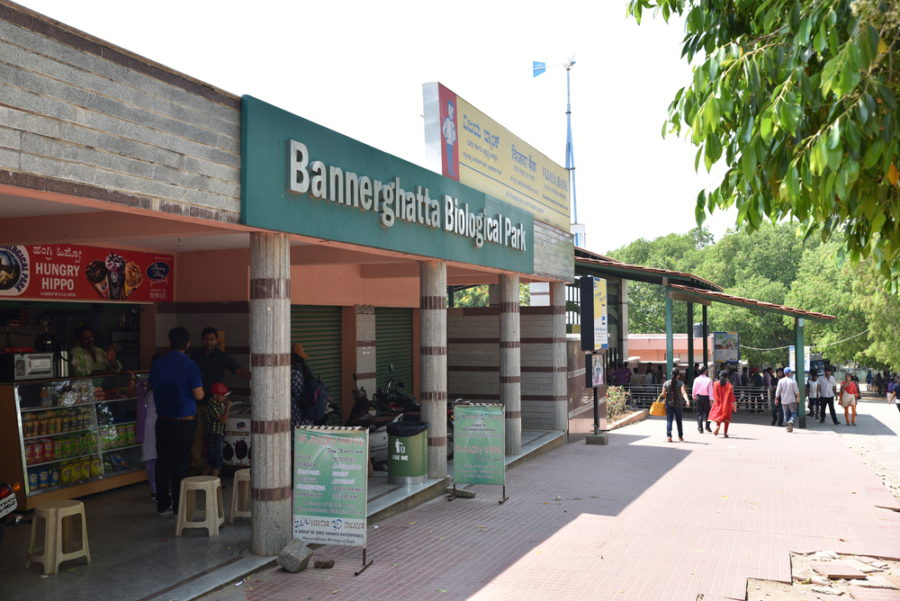 Bannerghatta Biological Park- Nature's Abode In Bangalore